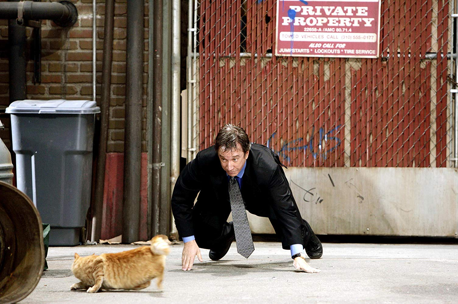 A part-canine Tim Allen chases a cat in The Shaggy Dog (2006)