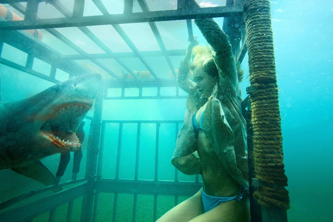 Sara Paxton trapped in a shark cage in Shark Night 3D (2011)