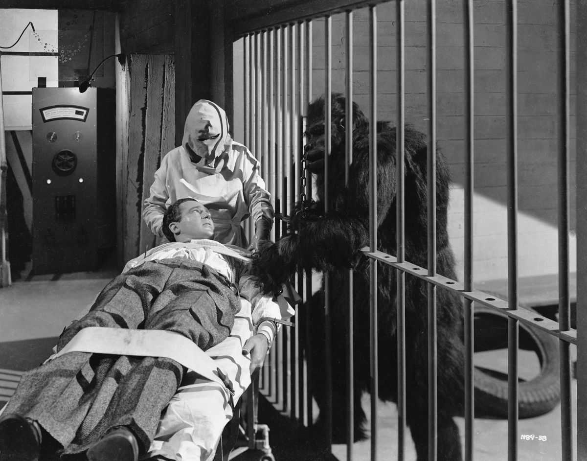 Patrick Knowles is wheeled away to the killer's laboratory while their gorilla looks on in The Strange Case of Doctor Rx (1942)