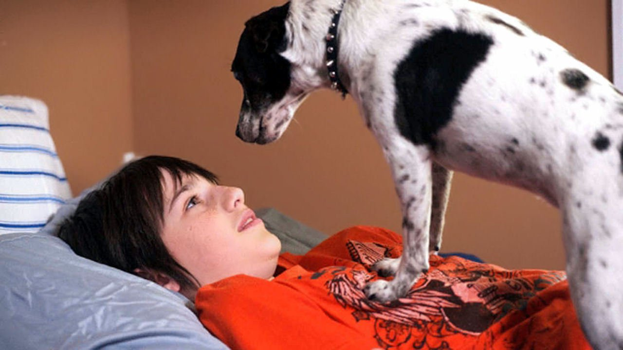 Collin McKechnie and Fang the Vampire Dog (2012)