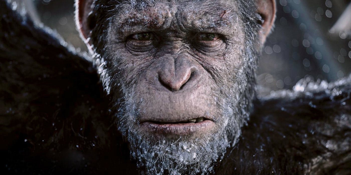 Caesar (Andy Serkis) in War for the Planet of the Apes (2017)
