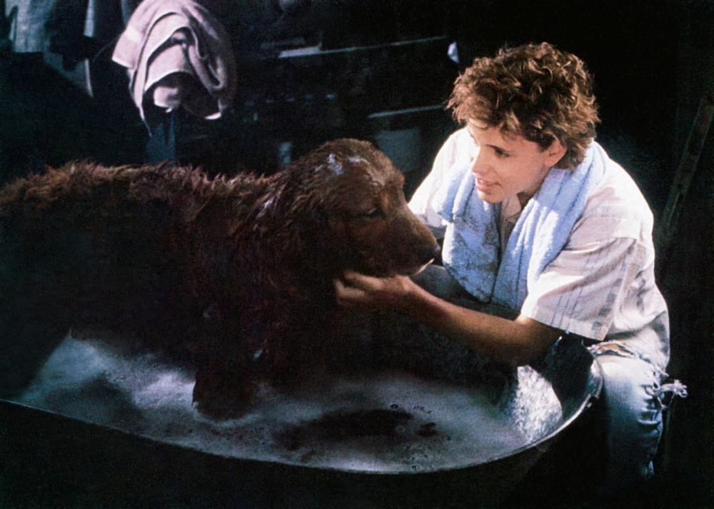 Corey Haim with an unusually intelligent dog in Watchers (1988)