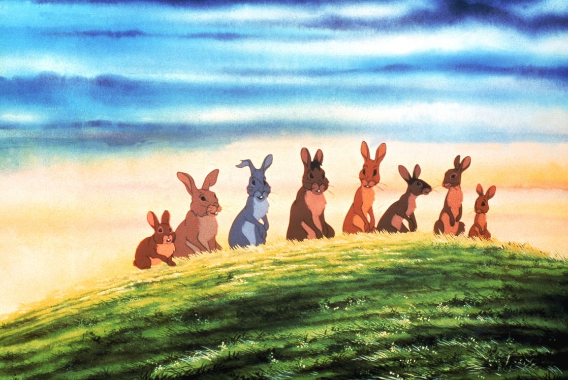 Rabbits on a quest to create a new warren in Watership Down (1978)
