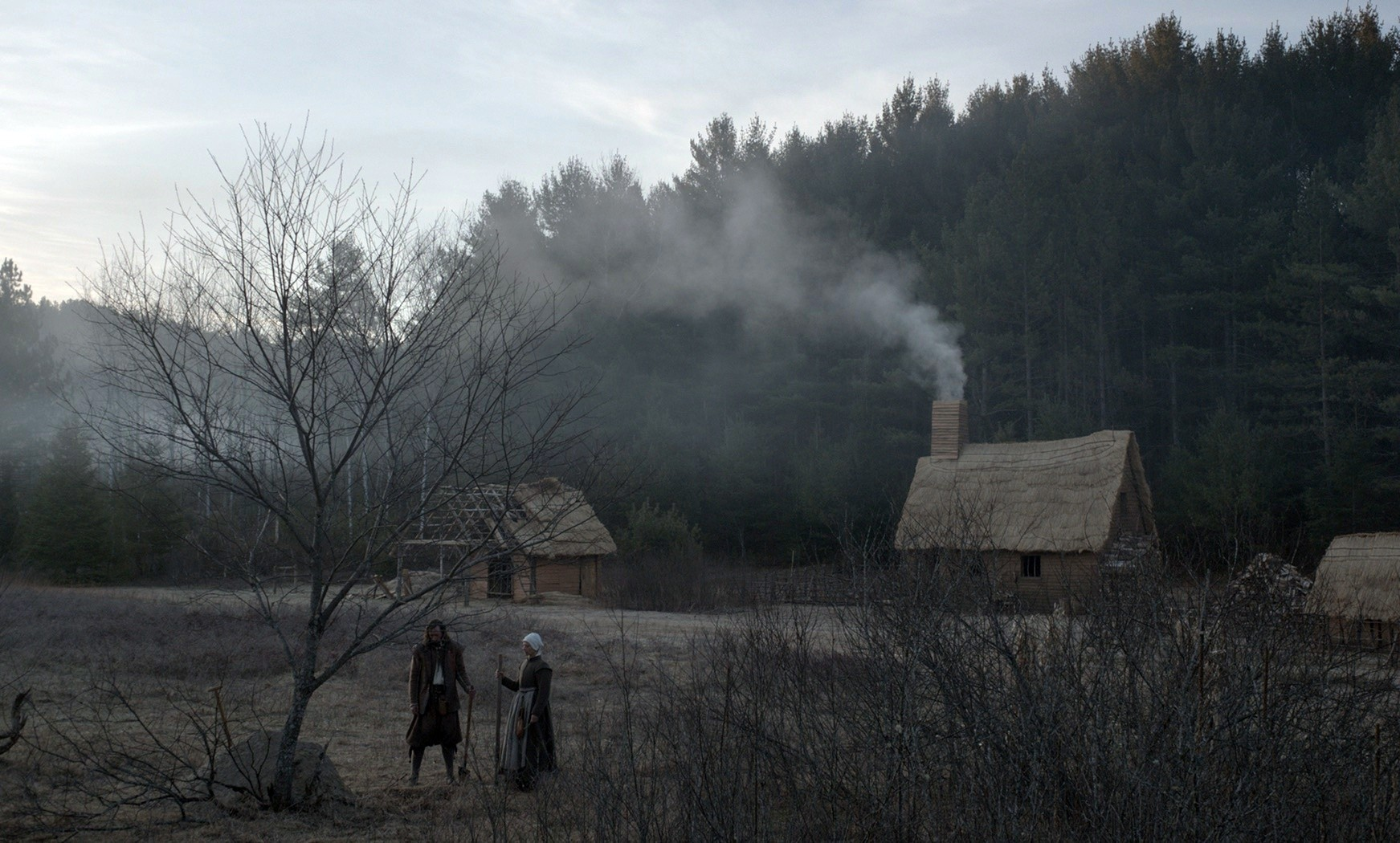 Husband and wife Ralph Ineson and Kate Dickie set up home amid the harshness of life in the 17th Century in The Witch: A New-England Folktale (2015)