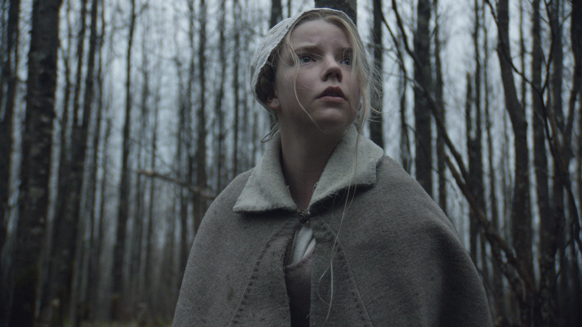 Thomasina (Anya Taylor-Joy) ventures into the woods in The Witch A New-England Folktale (2015)