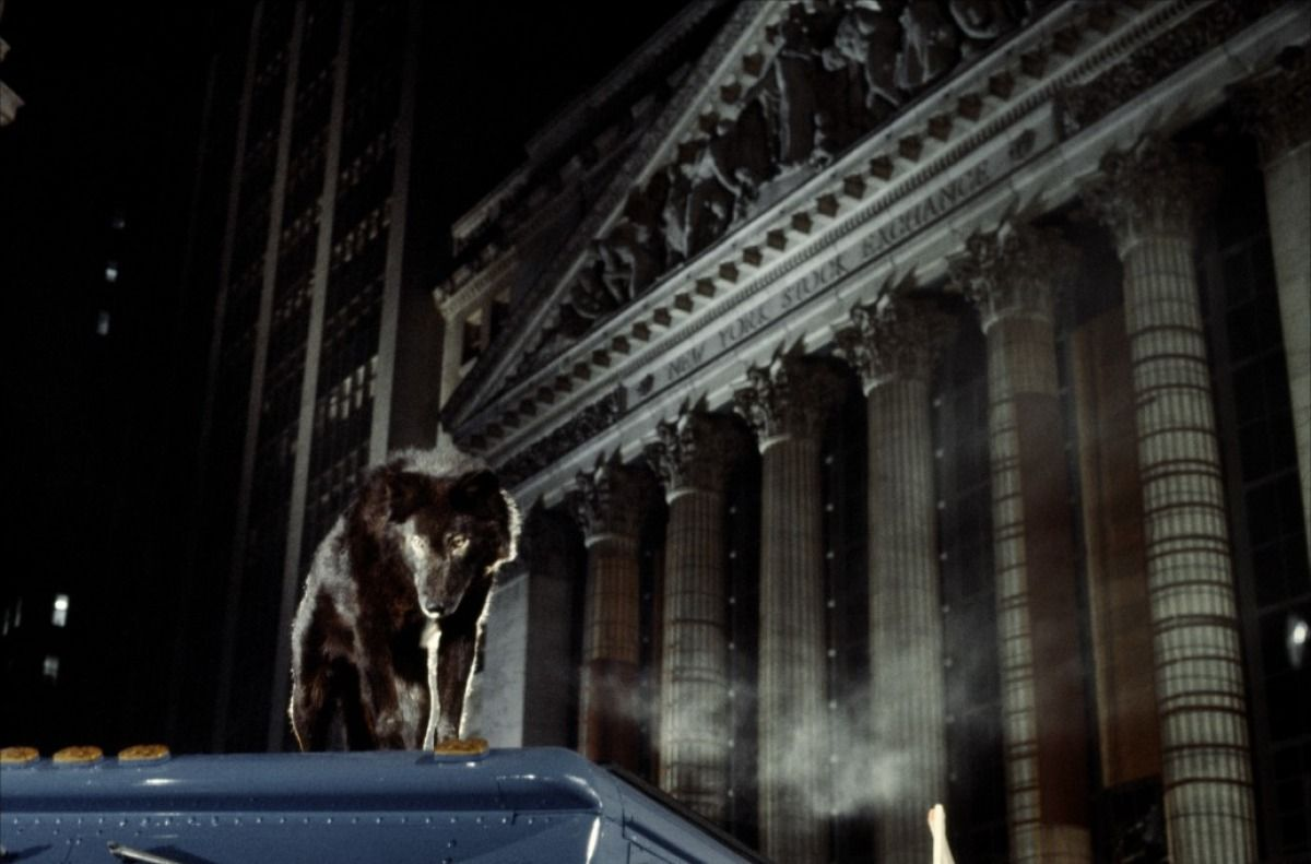 Intelligent wolves on the hunt in New York City in Wolfen (1981)