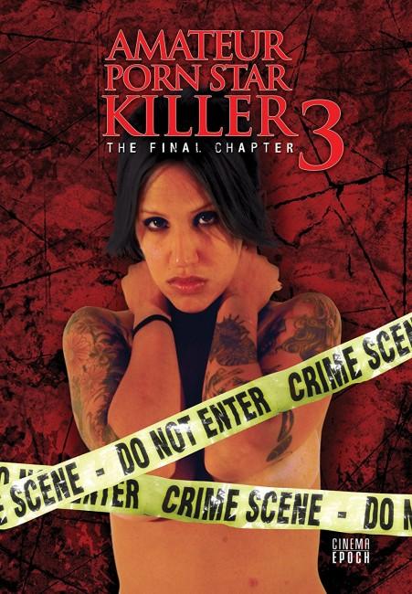 Amateur Porn Star Killer 3: The Final Chapter (2009) poster