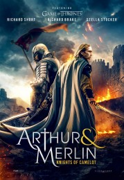 Arthur and Merlin: Knights of Camelot (2020) poster