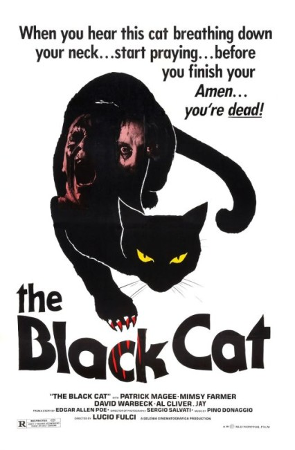 The Black Cat (1981) poster