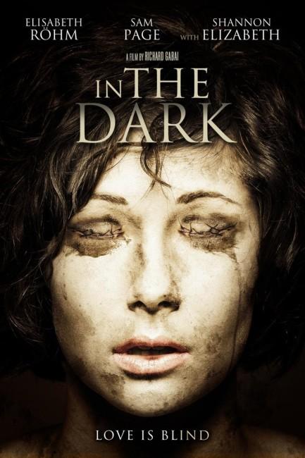 In the Dark (2013) poster