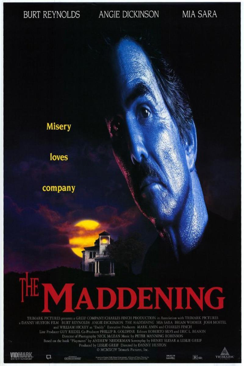 The Maddening (1995) poster