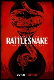 Rattlesnake (2019) poster