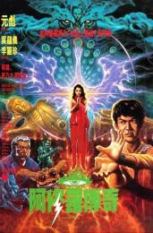 Saga of the Phoenix (1990) poster